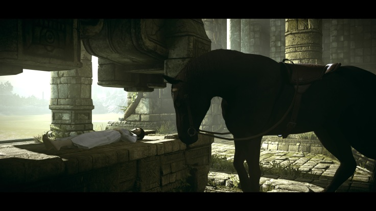 SHADOW OF THE COLOSSUS™_20180208125537.jpg