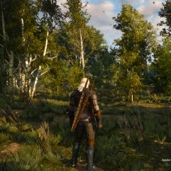 The Witcher 3 Wild Hunt (11)