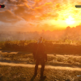The Witcher 3 Wild Hunt (18)